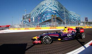 Premiere in Russland: Im Sotschi Autodrom fährt die Formel 1 2014 zum ersten Mal. (Foto)