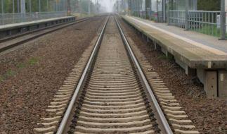 Lokführer bestreiken Bahn das ganze Wochenende (Foto)