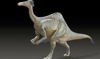 Forscher lösen Rätsel um Dinosaurier mit riesigen Pranken (Foto)