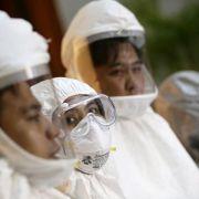 Deutschland testet Ebola-Impfstoff - WHO: Fast 5000 Tote (Foto)