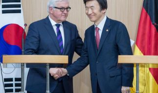 Steinmeier besucht innerkoreanische Grenze (Foto)