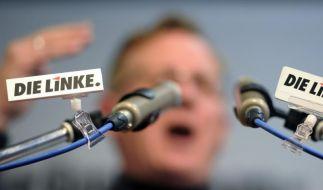 Grünen-Chefin: Zeitpunkt für Gaucks Kritik an Linken unglücklich (Foto)