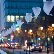 Gedenkstunde im Bundestag zum Mauerfall-Fest (Foto)