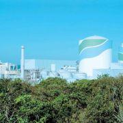 Grünes Licht für Reaktor-Neustart in Japan (Foto)