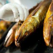 Fischduft lässt Penis erigieren (Foto)