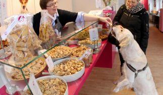 Deutsche geben neun Milliarden Euro im Jahr für Haustiere aus (Foto)