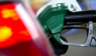 Billiger Treibstoff bremst alternative Antriebe aus (Foto)
