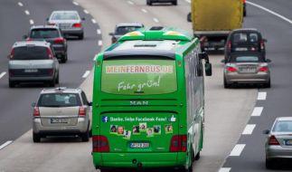 MeinFernbus soll 2014 erstmals Gewinn machen (Foto)