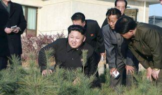 UN: Nordkorea soll vor Internationalen Strafgerichtshof (Foto)