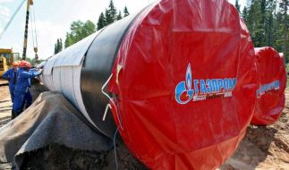 Ukraine-Sanktionen kosten Russland 40 Milliarden Dollar (Foto)