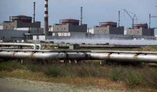 Blick auf das Atomkraftwerk Saporoschje im Südosten der Ukraine. (Foto)