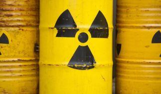 Mit dem Zwischenfall im AKW Saporischschja ist sie wieder allgegenwärtig: die Angst vor radioaktiver Strahlung. (Foto)