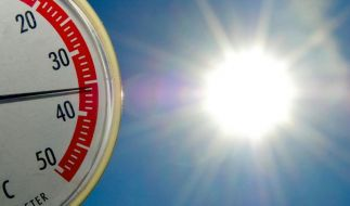 Neue Hitzwelle in Deutschland. (Foto)