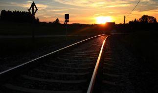 Bahn-Finanzchef: Gewinnziel 2014 wird wohl nicht erreicht (Foto)