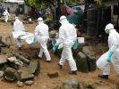 WHO: Mehr als 7900 Ebola-Tote (Foto)
