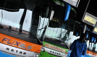 MeinFernbus und FlixBus gehen zusammen (Foto)