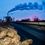 Nordzucker drohen rote Zahlen (Foto)