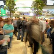 Grüne Woche:Kritiker machen mobil gegen noch mehr Globalisierung. (Foto)