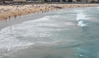 Hai-Alarm in Australien: Junge verletzt, Strände gesperrt (Foto)