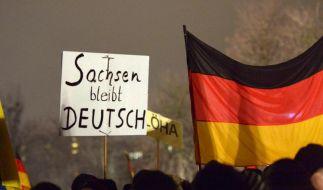 Pegida-Demonstranten mit einschlägigen Plakaten in Dresden. (Foto)