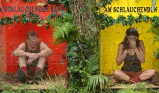 Tag 6: Walter Freiwald muss mit Tanja Tischewitsch zur Dschungelprüfung. (Foto)
