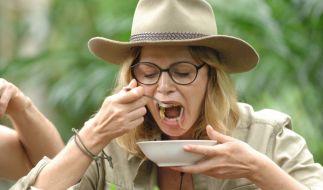 Dschungelcamp 2015, Tag 12: Maren Gilzer schluckt bei der Ekelprüfung, was die Schüssel hergibt. (Foto)