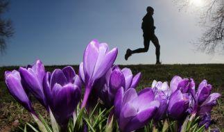 Starten Sie fit in den Frühling! (Foto)
