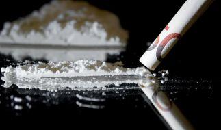 Urteil im Prozess gegen Chef-Drogenfahnder erwartet (Foto)