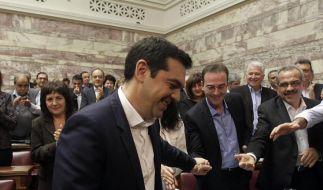 Tsipras stellt sich Vertrauensvotum im Parlament (Foto)