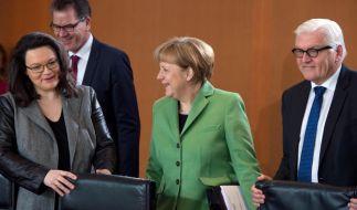 Fachkräftekonzept, Opferrechte und Breitbandausbau im Kabinett (Foto)