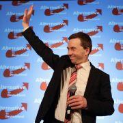 AfD feiert Hamburg-Ergebnis: «Dann schaffen wir es überall» (Foto)