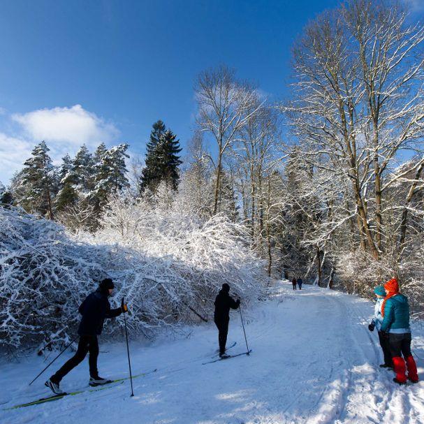 Sex-Lehrerin im Skilager in flagranti mit Schüler erwischt (Foto)