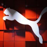 Puma optimisticher - sieht sich am Wendepunkt (Foto)