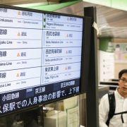 Starke Erdbeben erschüttern Nordosten Japans (Foto)