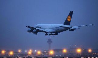 Medienbericht:Lufthansa plant gründlichen Umbau (Foto)