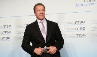 """Arnold Schwarzenegger: Auch in """"Terminator 6"""" ist er dabei. (Foto)"""