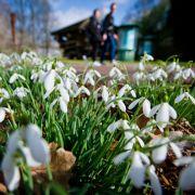 Der Frühling zeigt uns die kalte Schulter - noch! (Foto)