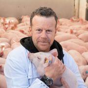 Jenke von Wilmsdorff unter Hunderten von Schweinen! (Foto)
