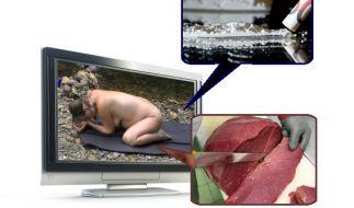 Was so über die TV-Bildschirme flimmert, ist beachtlich. (Foto)