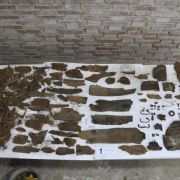Wissenschaftler wollen Knochenreste von Cervantes entdeckt haben (Foto)