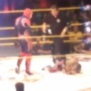 Wrestling-Star stirbt im Ring - es wird weitergekämpft! (Foto)
