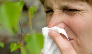 Schon wieder dieses Kribbeln in der Nase, das Augenjucken, dieses ständige Niesen. (Foto)