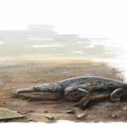 Fossiles Urzeitraubtier entdeckt (Foto)