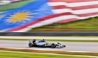 Der Große Preis von Malaysia: Am Wochenende geht die Formel-1 in die nächste Runde! (Foto)