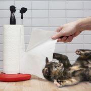 Knutsch-Alarm im Küchenalltag (Foto)