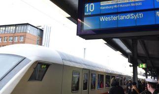 Verletzte und Bahnprobleme nach Sturmnacht (Foto)