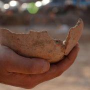 Ägypter brauten vor 5000 Jahren Bier im Raum Tel Aviv (Foto)