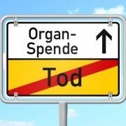 Frau sucht per Heckscheibe nach Spenderorgan (Foto)