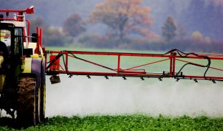 Ein Landwirt versprüht Pflanzenschutzmittel auf einem Feld (Archivfoto vom 14.10.2008). (Foto)