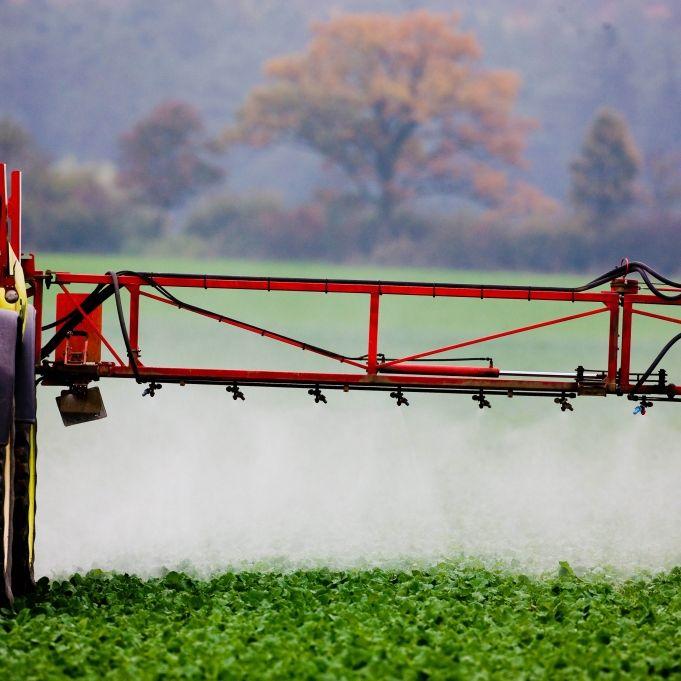 Achtung giftig! So verpestet ist unser Essen (Foto)